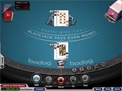 http://www.blackjackchamp.com/links/rushmorecasino.ref