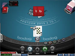 http://www.blackjackchamp.com/links/rushmorecasino.ref