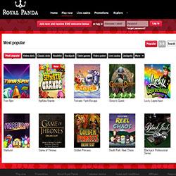 http://www.blackjackchamp.com/links/royalpanda.ref